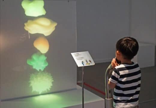 espace numérique et interactif pour l'enseignement