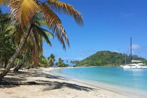 Louer un catamaran pour les vacances en Martinique